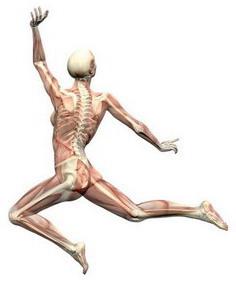 Stron Bones